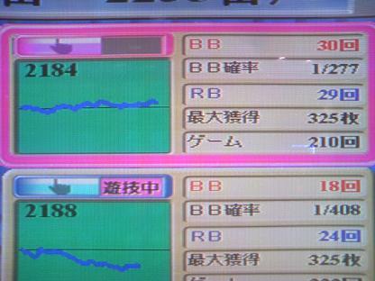 DCF_1128.JPG