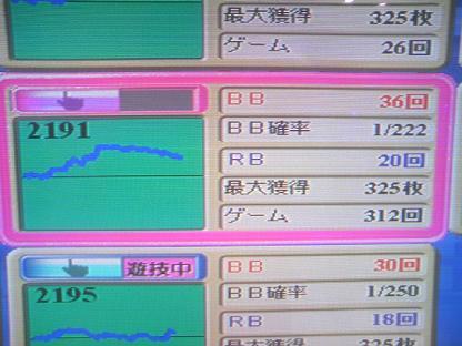 DCF_1166.JPG