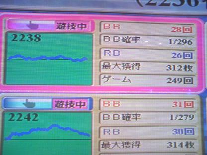 DCF_1191.JPG